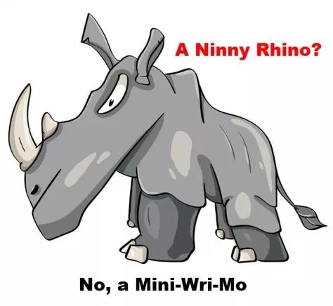 When rhinos are involved